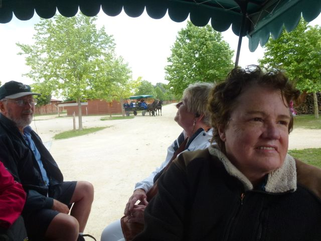budapest-horsefarm33