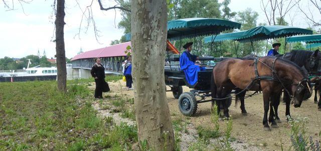 budapest-horsefarm40
