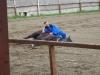 budapest-horsefarm30