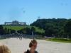 vienna-schoengren-palace3